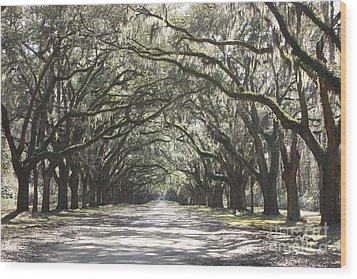 Soft Southern Day Wood Print by Carol Groenen