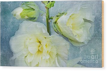 Wood Print featuring the photograph Softly by Betty LaRue