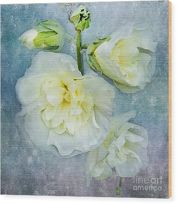 Wood Print featuring the photograph Softly In Blue by Betty LaRue