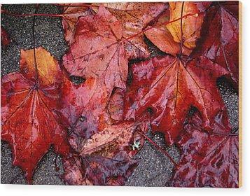 Soggy Leaves Wood Print by Sonja Anderson