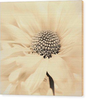 Wood Print featuring the photograph Soiree In Creamy Yellow by Darlene Kwiatkowski