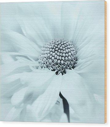 Wood Print featuring the photograph Soiree In Powder Blue by Darlene Kwiatkowski