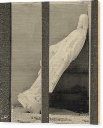 Solitary Confinement Wood Print by Ed Smith