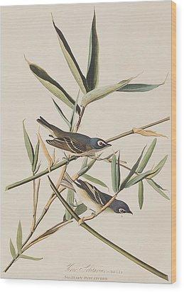 Solitary Flycatcher Or Vireo Wood Print by John James Audubon