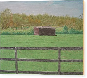 Solitary Shed Wood Print by Harvey Rogosin