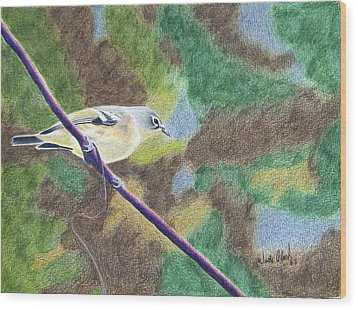Solitary Vireo Wood Print by Wade Clark