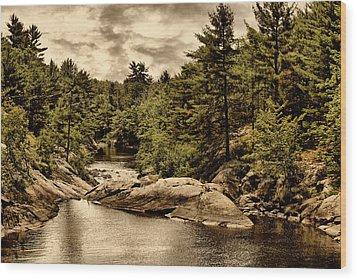 Solitary Wilderness Wood Print