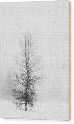 Wood Print featuring the photograph Solitude  by Alana Ranney