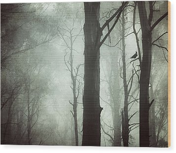 Wood Print featuring the photograph Solitude by Amy Weiss