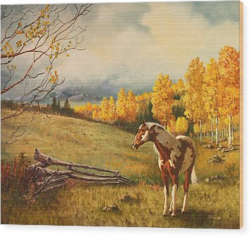 Solitude Wood Print by David Gage