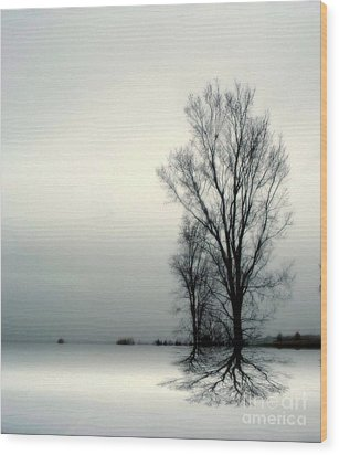 Wood Print featuring the digital art Solitude by Elfriede Fulda