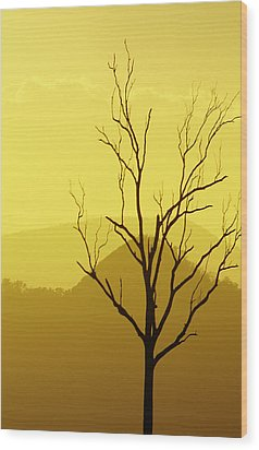 Solitude Wood Print by Holly Kempe