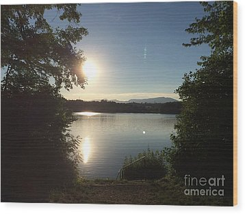 Solothurn 1 Wood Print