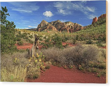 Wood Print featuring the photograph Some Cactus In Sedona by James Eddy