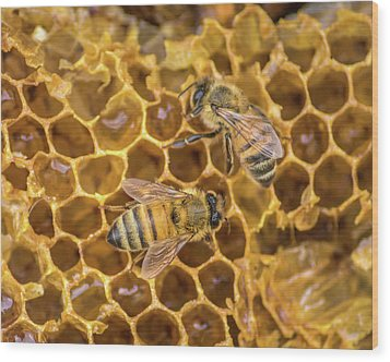Wood Print featuring the photograph Some Of Your Beeswax by Bill Pevlor