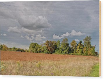 Wood Print featuring the photograph Somerset Sky 3069 by Guy Whiteley