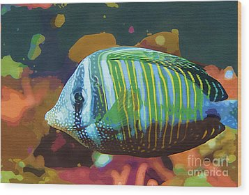 Something Fishy Wood Print by Deborah MacQuarrie-Selib