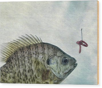 Wood Print featuring the photograph Something Fishy by Mark Fuller