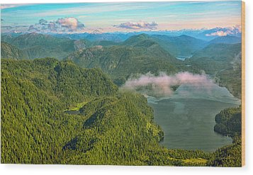 Wood Print featuring the photograph Over Alaska - June  by Madeline Ellis