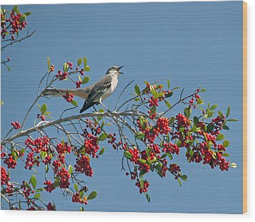 Wood Print featuring the photograph Song Of The Mockingbird by Peg Urban