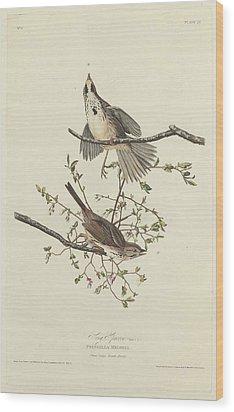 Song Sparrow Wood Print by Anton Oreshkin