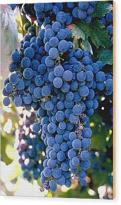 Sonoma Grapes Wood Print by Bart Edson
