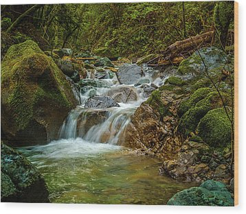 Wood Print featuring the photograph Sonoma Valley Creek by Bill Gallagher