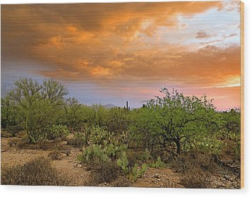 Wood Print featuring the photograph Sonoran Desert H11 by Mark Myhaver