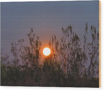 Sonoran Desert Harvest Moon Wood Print