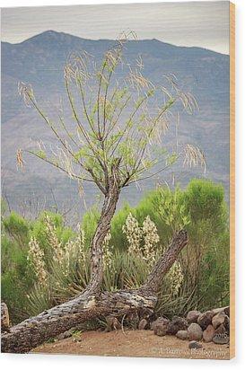Sonoran Flora Wood Print