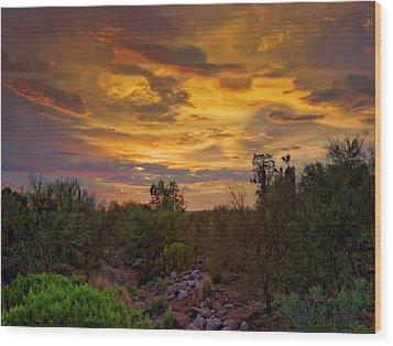 Wood Print featuring the photograph Sonoran Sonata H01 by Mark Myhaver