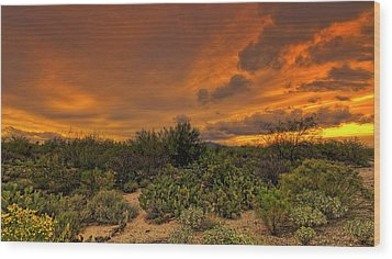 Wood Print featuring the photograph Sonoran Sunset H4 by Mark Myhaver