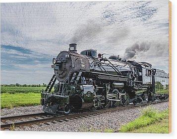 Wood Print featuring the photograph Soo 1003 At Darien 2 by Randy Scherkenbach