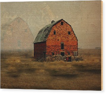 Soon To Be Forgotten Wood Print by Julie Hamilton