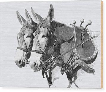Sorrel Mule Team Wood Print by Bethany Caskey