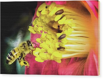 Wood Print featuring the photograph Soul Of Life by Karen Wiles