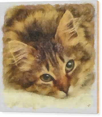 Soulful Eyes Wood Print