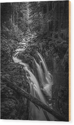Sound Of Strength Wood Print by Jon Glaser