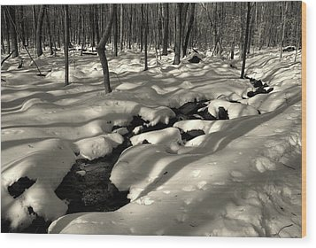 Wood Print featuring the photograph Sourland Mountains 4 by Steven Richman