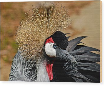 Wood Print featuring the photograph South African Crowned Crane by Linda Brown
