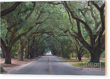 South Boundry Wood Print by Skip Willits
