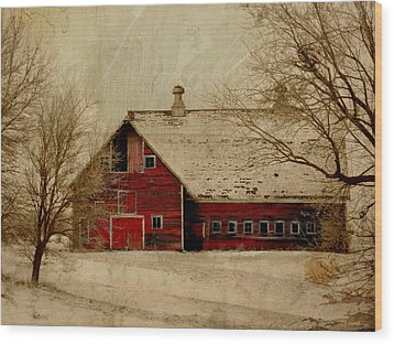 South Dakota Barn Wood Print by Julie Hamilton