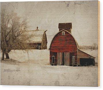 South Dakota Corn Crib Wood Print by Julie Hamilton