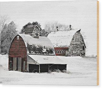 South Dakota Farm Wood Print by Julie Hamilton