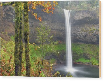 South Falls On A Drizzly Day Wood Print by David Gn