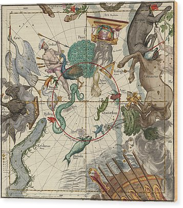 South Pole Wood Print