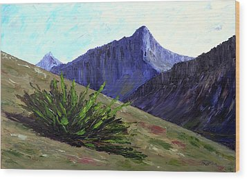 South Side Of O'malley Peak Wood Print