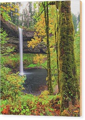 South Silver Falls Wood Print