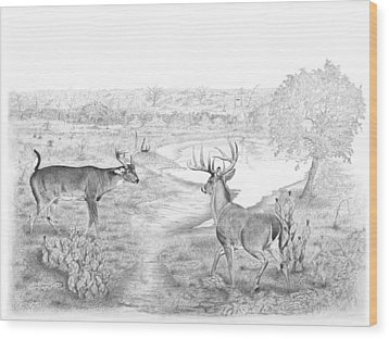 South Texas Stand Off Wood Print by Steve Maynard