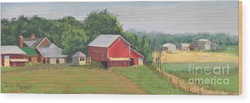 South View Of Meyer Farm Wood Print by Terri  Meyer